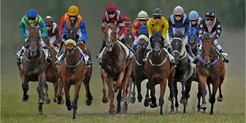 Wedden op paardenrennen